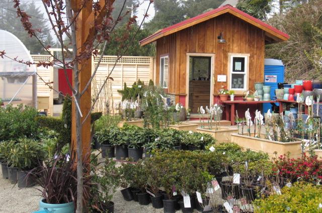 SeaCoast Gardens Shop